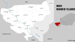 Attaques terroristes au Niger